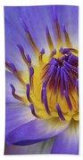 The Lotus Flower Beach Towel