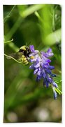 Bumblebee On A Blue Giant Hyssop Beach Towel