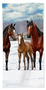 Bay Horses In Winter Pasture Beach Sheet