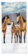 Buckskin Horses In Winter Pasture Beach Towel