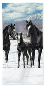 Black Appaloosa Horses In Winter Pasture Beach Towel