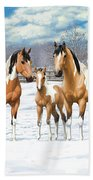 Buckskin Paint Horses In Winter Pasture Beach Towel by Crista Forest