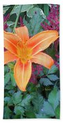 Image Included In Queen The Novel - Late Summer Blooming In Vermont 23of74 Enhanced Beach Towel