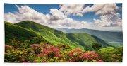 Asheville Nc Blue Ridge Parkway Spring Flowers Scenic Landscape Beach Towel