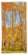 Aspen Fall Foliage Vertical Image Beach Towel