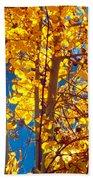 Aspen Glow Autumn Sky Beach Towel