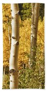 Aspen Gold Beach Towel by James BO  Insogna