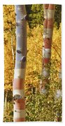 Aspen Gold Red White And Blue Beach Towel