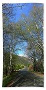 Aspen Lined Road Beach Towel