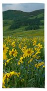 Aspen Sunflower And Mountain Landscape Beach Sheet