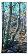 Aspen Trail Beach Towel