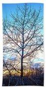 Aspen Tree At Sunset Beach Towel