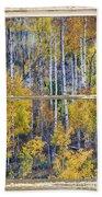 Aspen Tree Magic Cottonwood Pass White Farm House Window Art Beach Towel