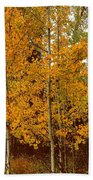 Aspen Trees With Autumn Leaves  Beach Towel