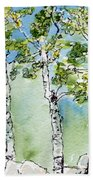 Aspen Trio Beach Towel