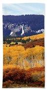 Aspen Vista Beach Towel
