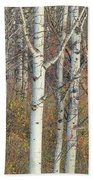 Aspens At Dusk Beach Towel