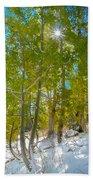 Aspens At Pine Creek Basin Beach Towel