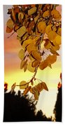 Aspens At Sunset Beach Towel