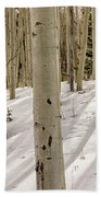 Aspens In Winter 2 Panorama - Santa Fe National Forest New Mexico Beach Towel