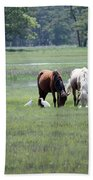 Assateague Island - Wild Ponies And Their Buddies  Beach Towel