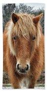 Assateague Island Horse Miekes Noelani Beach Towel
