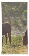 Assateague Island Wild Ponies Beach Towel