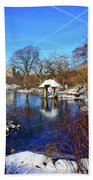 At The Frozen Lake Beach Towel