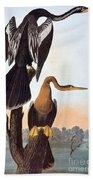 Audubon: Anhinga Beach Towel