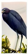 Audubon Blue Beach Towel