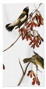 Audubon: Bobolink Beach Towel