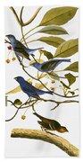 Audubon: Bunting, 1827-38 Beach Towel