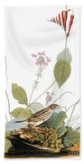 Audubon: Bunting Beach Towel