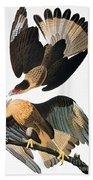 Audubon: Caracara, 1827-38 Beach Towel