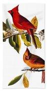 Audubon: Cardinal Beach Towel
