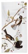 Audubon: Chickadee, (1827-1838) Beach Towel
