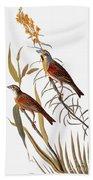 Audubon: Dickcissel Beach Towel