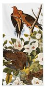 Audubon Dove Beach Towel