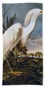 Audubon: Egret Beach Towel