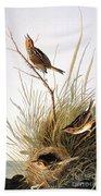 Audubon: Finch Beach Towel