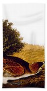 Audubon Lark Beach Towel