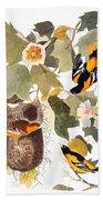 Audubon: Oriole Beach Towel