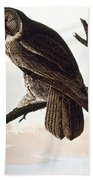Audubon Owl Beach Towel