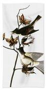 Audubon: Phoebe Beach Towel