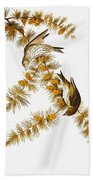 Audubon: Siskin Beach Towel