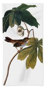Audubon: Sparrow, 1827-38 Beach Towel