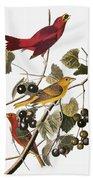 Audubon: Tanager Beach Towel
