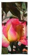 Aurora Color Rose Bud. Wow Beach Towel