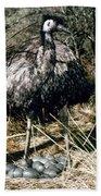 Australian Emu Beach Towel