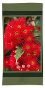 Australian Red Eucalyptus Flowers With Design Beach Towel